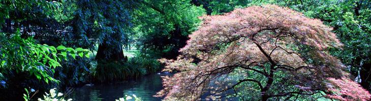 Gam milano percorso botanico for Giardino botanico milano